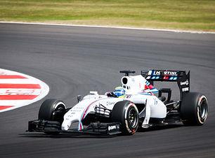 O Felipe_Massa_2014_British_GP_013 (1).j