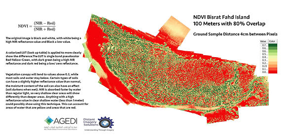 NDVI index image low res.jpg