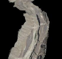 Close Up Wadi Wurayah Mountain Reserve