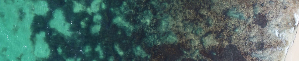 Example of aerial image of coral/seagrass area taken from Drone