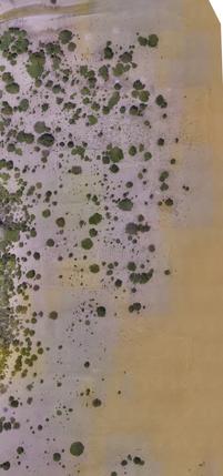 Close-up coastal development site - Qatar