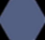 Sekskant_mørkeblå_RGB.png