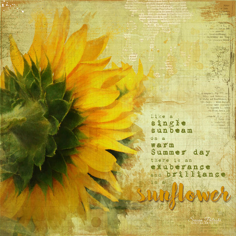 Painted Sunflower 4