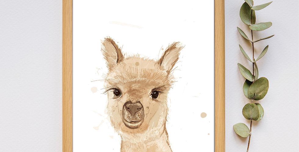 Llama - Framed Print