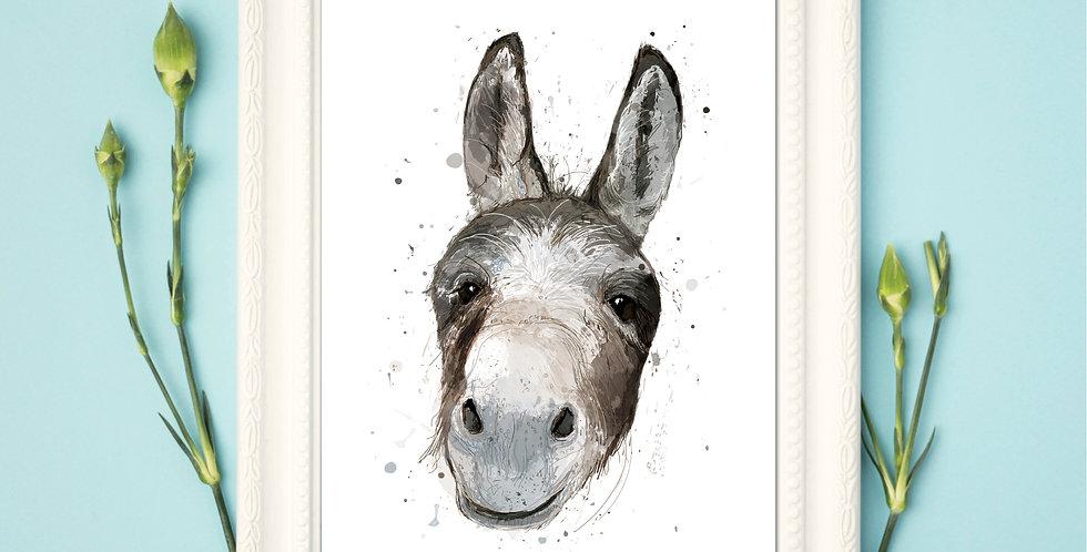 Donkey - Framed Print