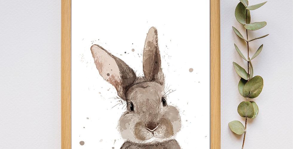 Bunny - Framed Print