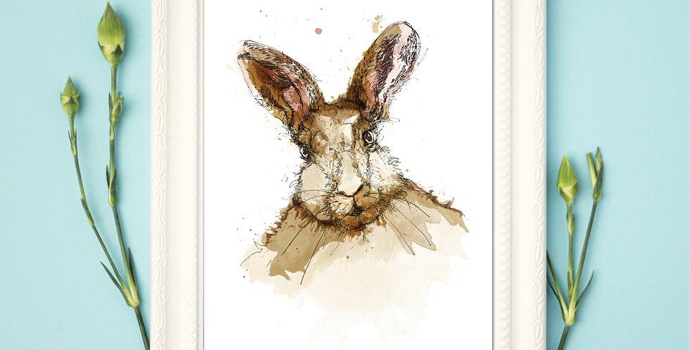 Hare - Framed Print