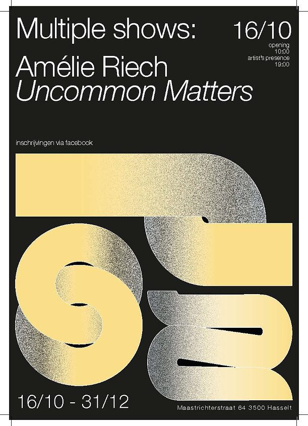 Affiche Amelie Riech 16-10.jpg