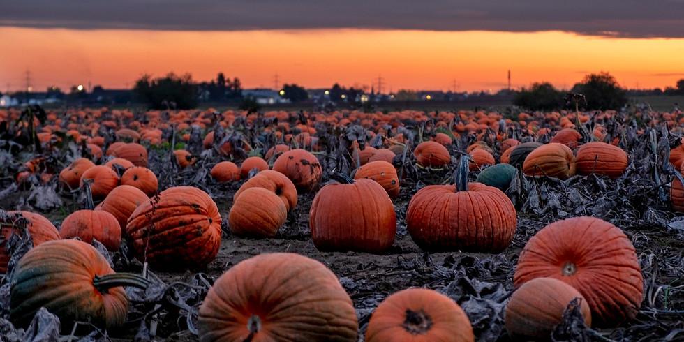 Autumnal Supper Club -  7th November