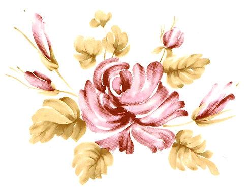 Růže podglazurové