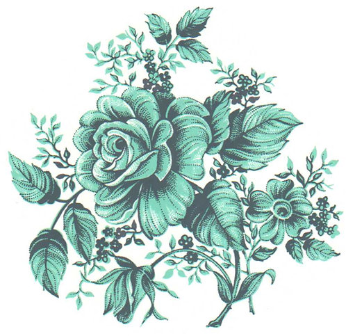 Růže tyrkysová