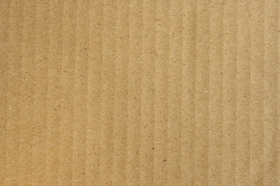 Cardboard 3 Corrugated.jpeg