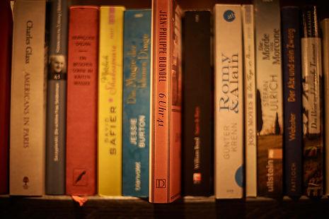 Bücherregal gefüllt mit Romanen, Krimis und Biografien