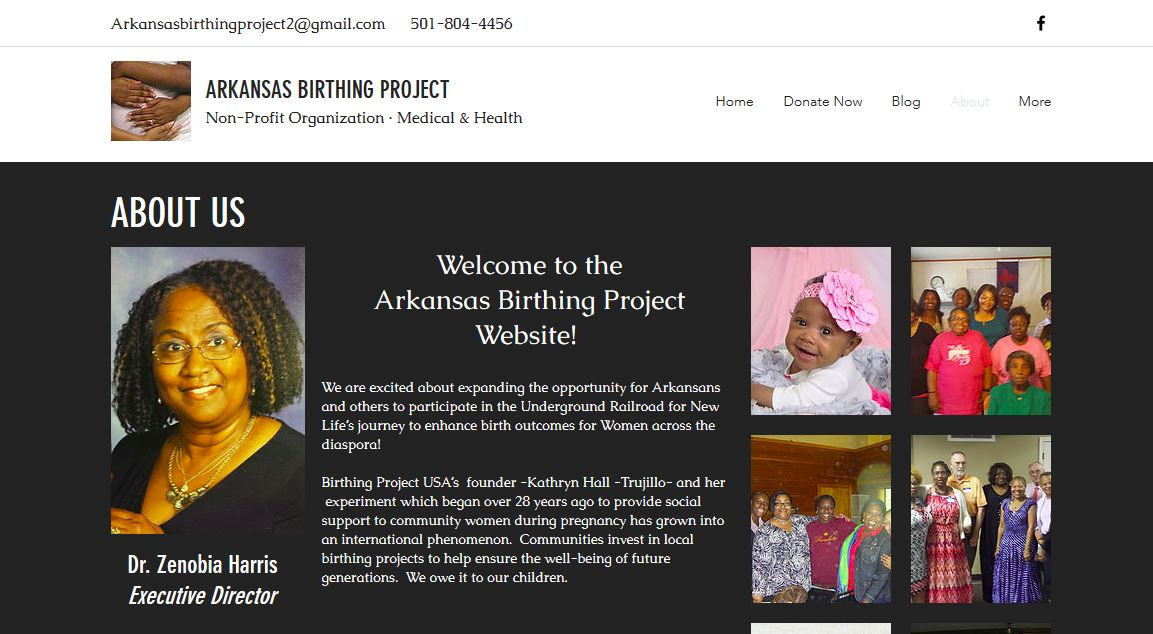 example website_birthing project