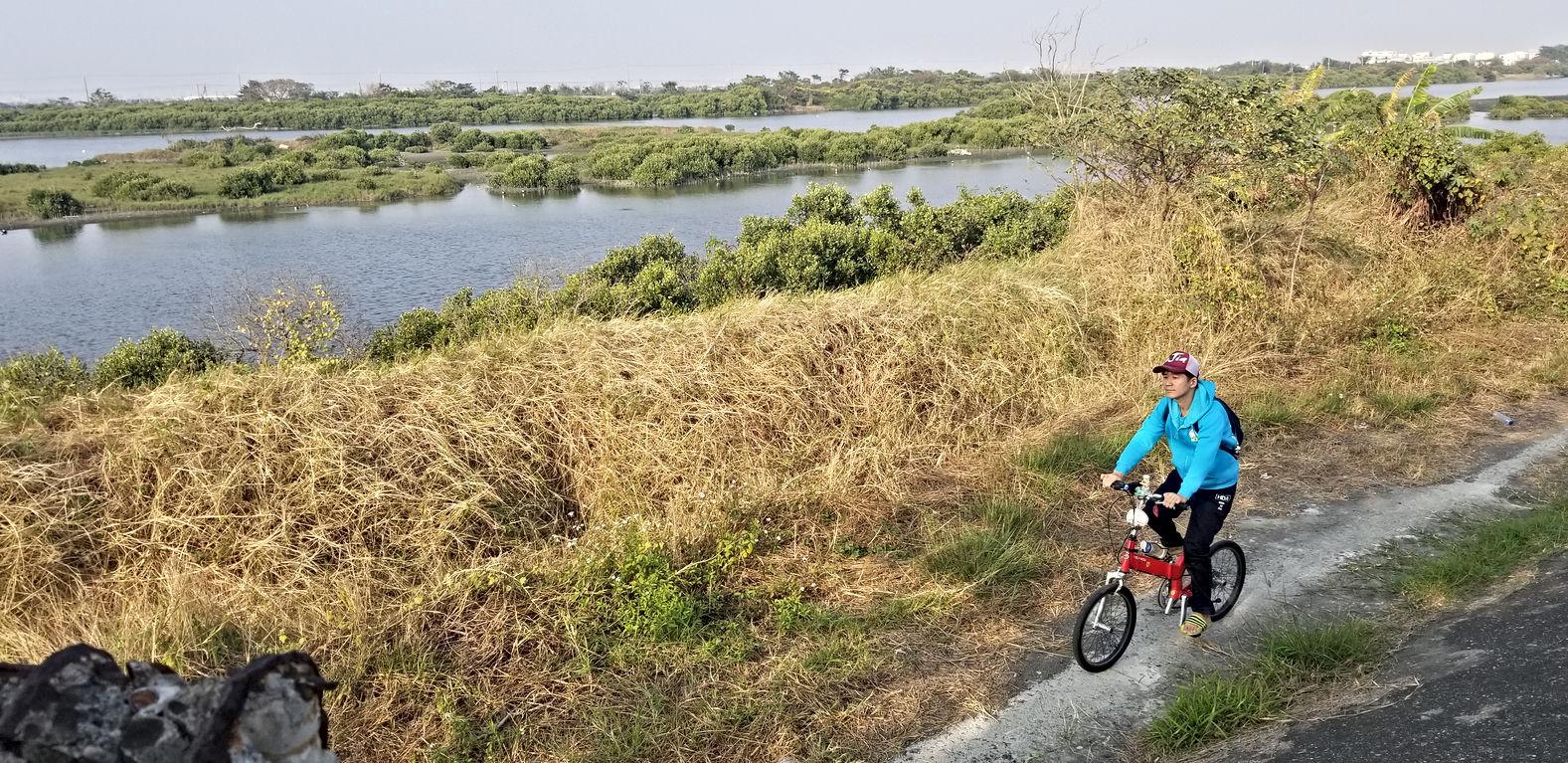 湖濱水鳥公園wetland anping