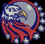 USA Eagle.png