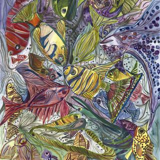 Sea Creatures of Florida