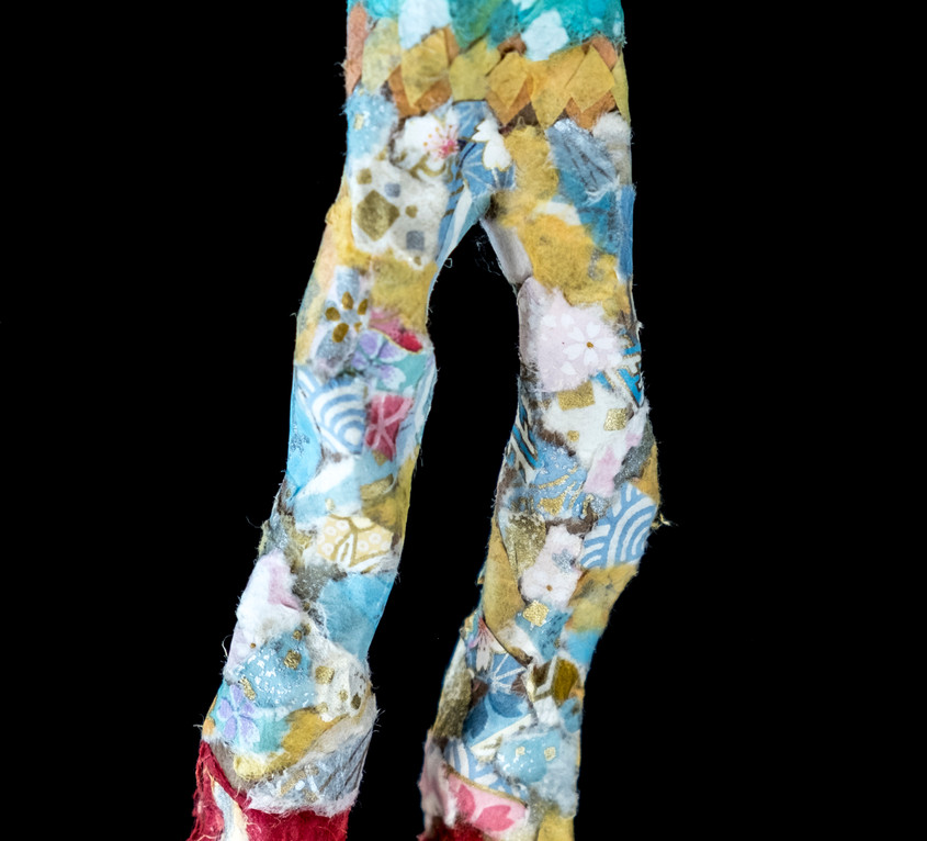 The Court Jester's Pants