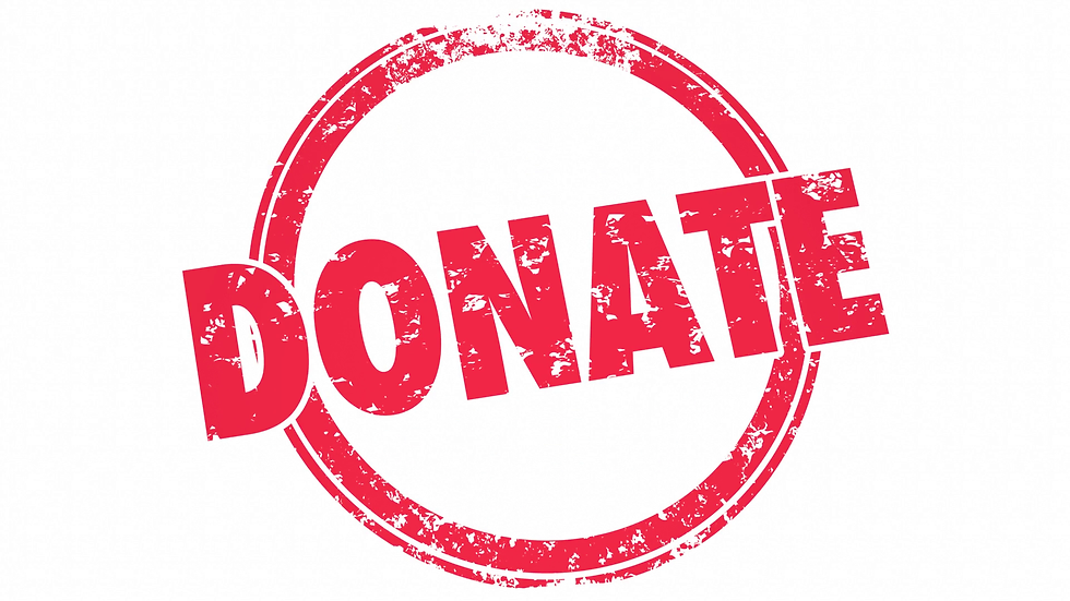 Donate to the Friends of the Boerne Public Library