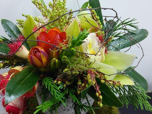 Orchid pot arrangement.