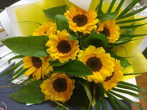 Sunflowers..x5