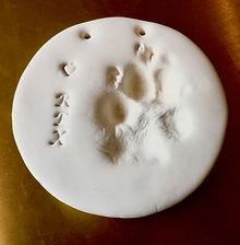 Rex Paw Print Stone.jpeg