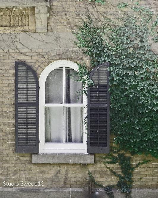 Architecture & Doors • Window