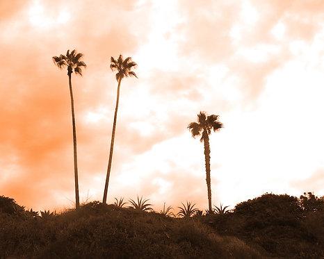 Beach & Coastal  Wall Art • Cali Sky