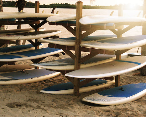 Beach & Coastal Wall Decor • Surfs Up