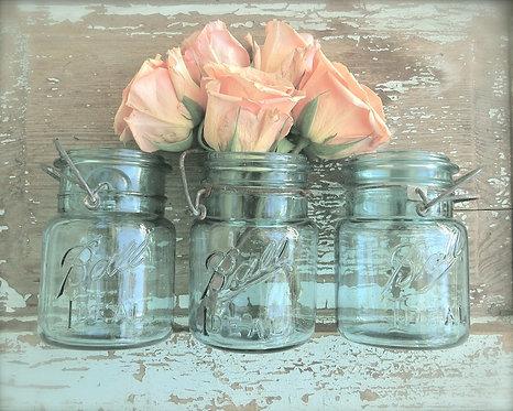 Kitchen & Bath Wall Decor • Peach Blossoms