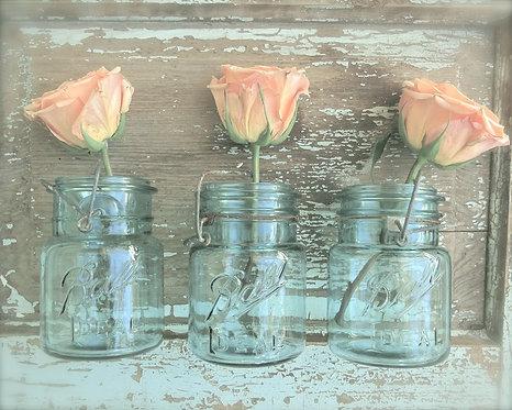 Kitchen & Bath Wall Decor • Rose Trio