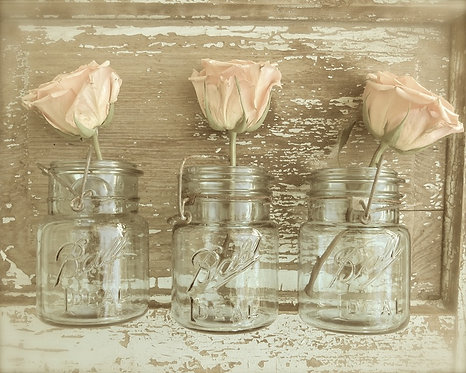 Farmhouse Wall Art • Rose Trio