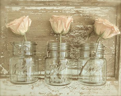 Flower Wall Art • Rose Trio
