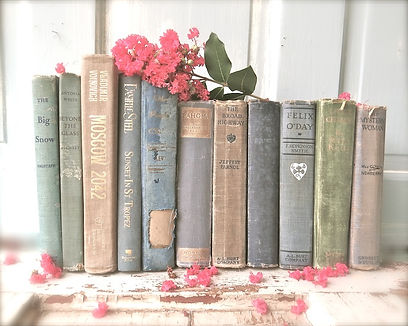 antique book art for the cottage library or office