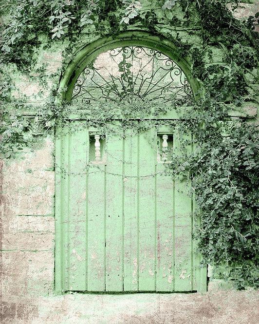 Architecture & Doors • Green Weathered Door