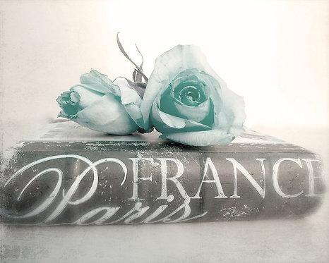 Romantic Rose Art • Paris Romantic