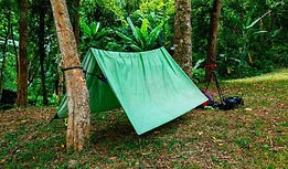 green-camping-tent-forest-greent-tourist