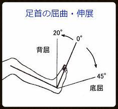 足首の運動 肉離れに関係