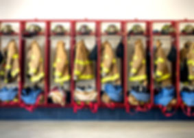 Law and Pubic Safety Network Fire Services