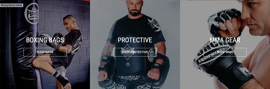 Shop Bags Protective MMA