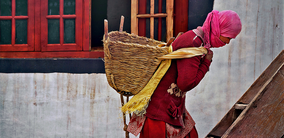 Ladakhi Woman at work;  Thickse, Leh,India