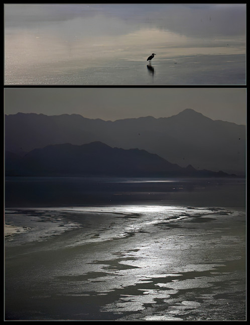 Diptych: Evening Light Reflected on a Briny Surface