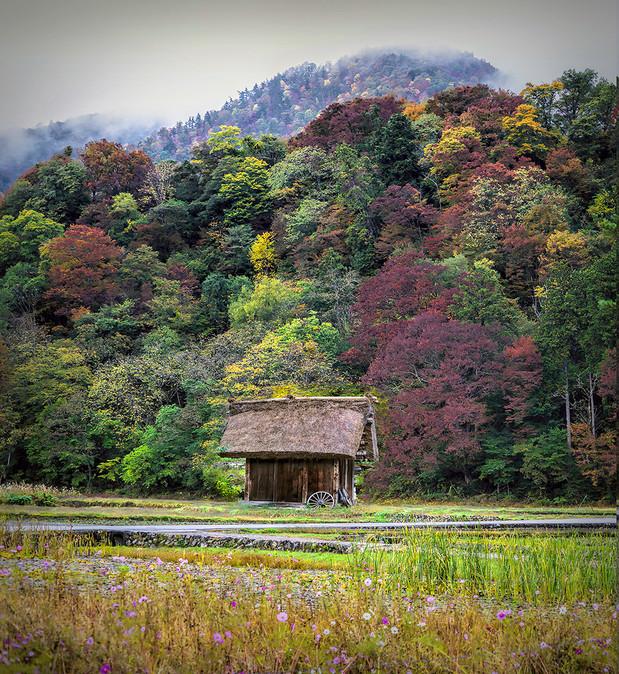 Thatched Shed in Shirakawago, Japan