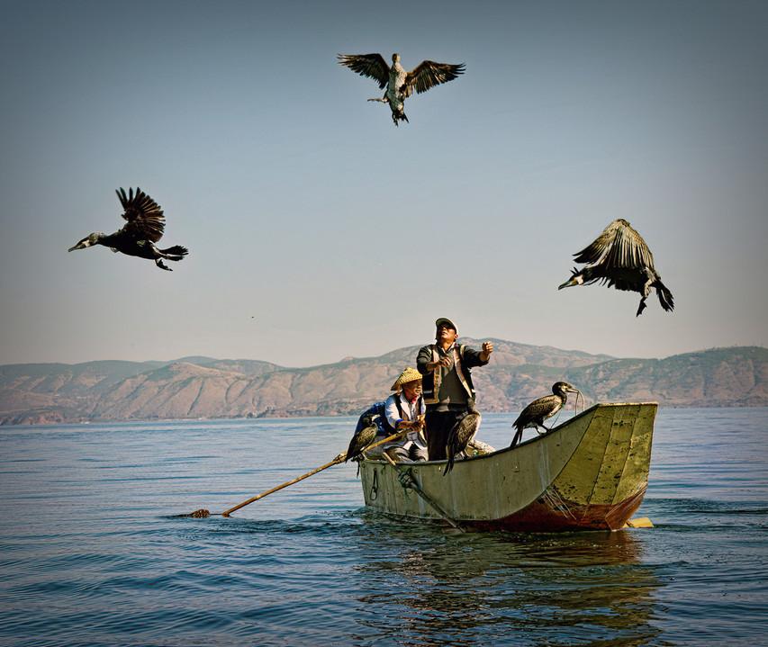 Cormorant Fishing, Erhai Lake, Yunnan Province
