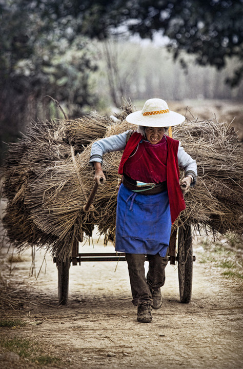 Woman Pulling Hay Cart;  Countryside in Yunnan Province