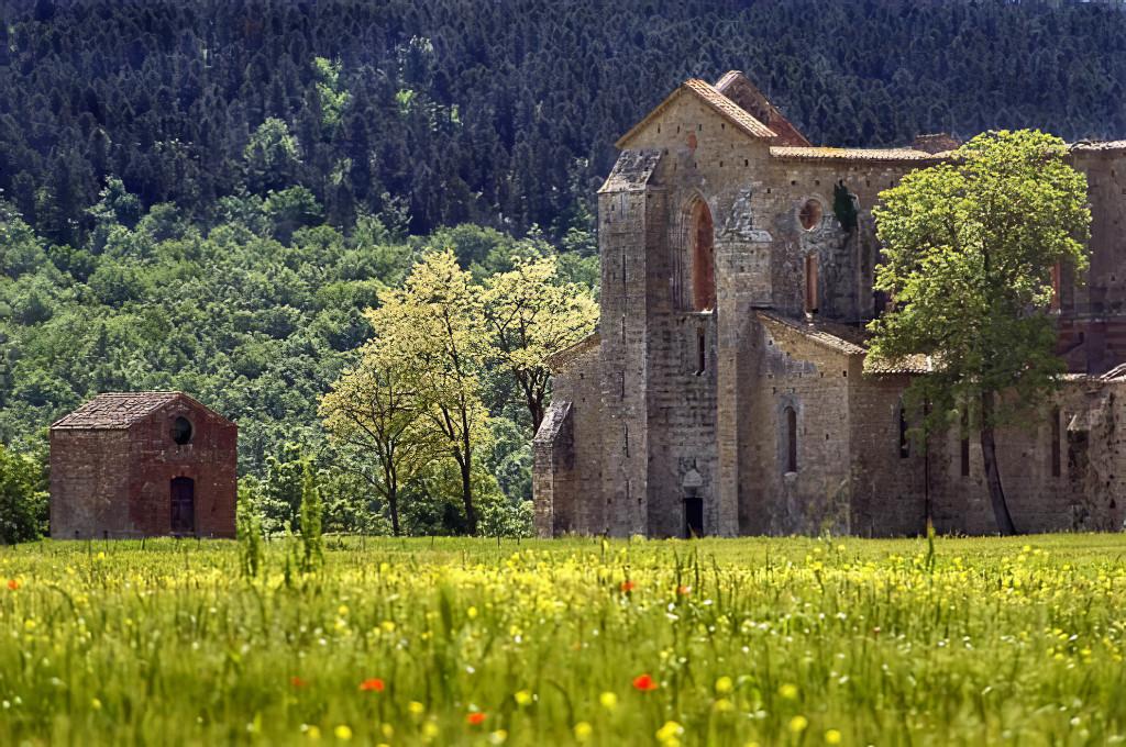 San Galgano in Spring, Tuscany, Italy