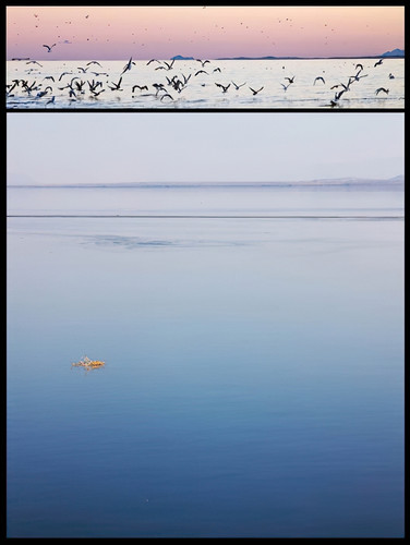 Diptych: Sunset on the Salton Sea