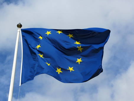 Quelle politique migratoire pour  l'Union européenne ?