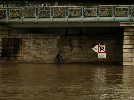 Photos : la Seine en crue à Paris