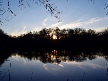 La pause photo #3 : Lumières d'hiver